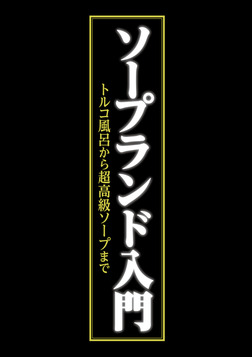 ソープランド入門 ~トルコ風呂から超高級ソープまで~-電子書籍