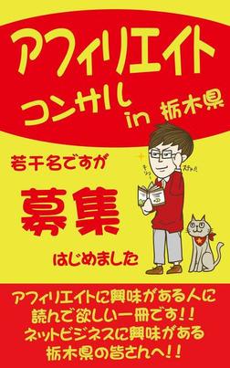 アフィリエイト(ネットビジネス)コンサル in 栃木県【東京でもOK】-電子書籍