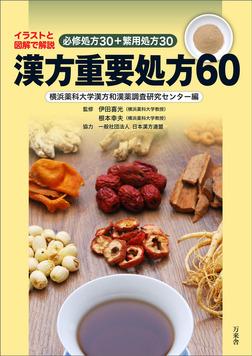 漢方重要処方60 イラストと図表で解説 必修処方30+繁用処方30-電子書籍