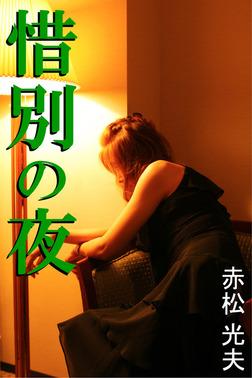 惜別の夜-電子書籍