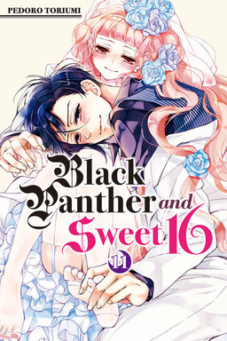 Black Panther and Sweet 16 Volume 11