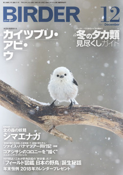 BIRDER2017年12月号-電子書籍
