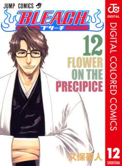 BLEACH カラー版 12-電子書籍