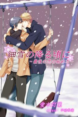 細雪の降る頃に~最後の恋の始め方~-電子書籍