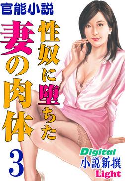 【官能小説】性奴に堕ちた妻の肉体03-電子書籍