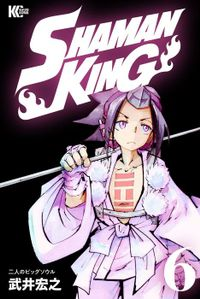 SHAMAN KING ~シャーマンキング~ KC完結版(6)