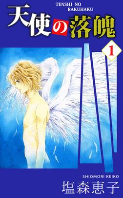天使の落魄 1-電子書籍