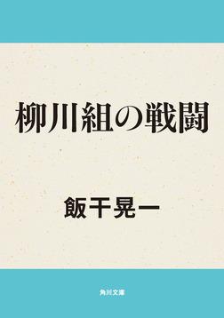 柳川組の戦闘-電子書籍