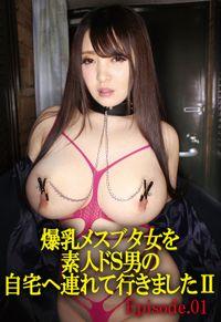 爆乳メスブタ女シリーズ