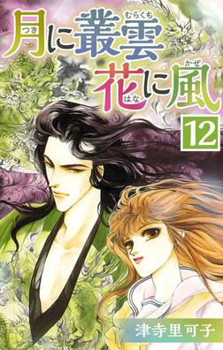 月に叢雲 花に風 12-電子書籍