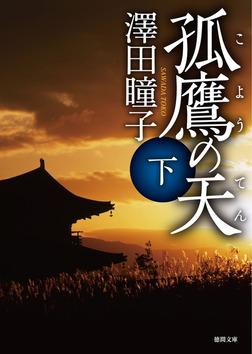 孤鷹(こよう)の天 下-電子書籍