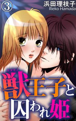 獣王子と囚われ姫 3-電子書籍