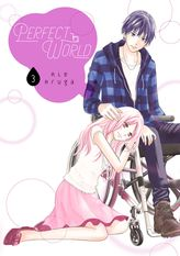 Perfect World Volume 3