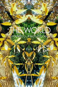 :THE WORLD - 「symmetry」#Autumn leaves