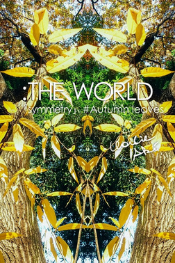 :THE WORLD - 「symmetry」#Autumn leaves-電子書籍