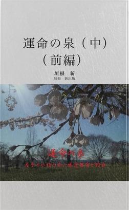 運命の泉 中 (前編)-電子書籍