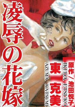 凌辱の花嫁-電子書籍