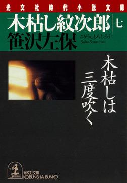 木枯し紋次郎(七)~木枯しは三度吹く~-電子書籍