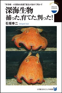 """深海生物 捕った、育てた、判った! """"世界唯一の深海水族館""""館長が初めて明かす(小学館101ビジュアル新書)-電子書籍"""