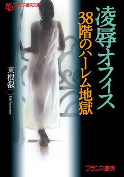 凌辱オフィス【38階のハーレム地獄】-電子書籍