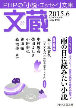 文蔵 2015.6-電子書籍