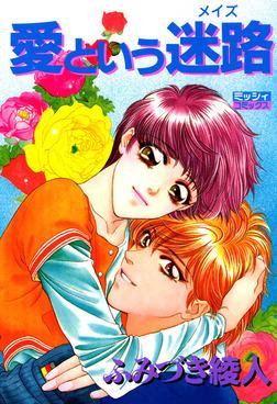 愛という迷路 (菊池と竹村のシリーズ2)-電子書籍