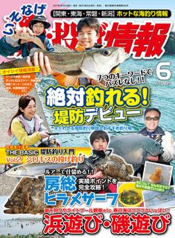 磯・投げ情報 2017年 06月号-電子書籍