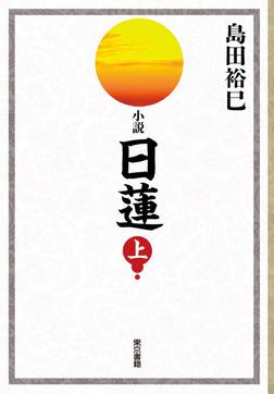 小説 日蓮 上巻-電子書籍