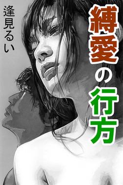縛愛の行方-電子書籍