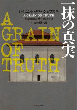 一抹の真実 ~A GRAIN OF TRUTH~-電子書籍