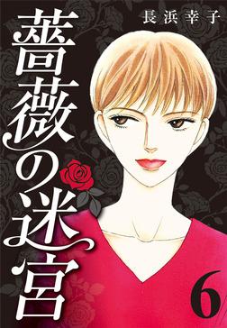 薔薇の迷宮 ~義兄の死、姉の失踪、妹が探し求める真実~ (6)-電子書籍