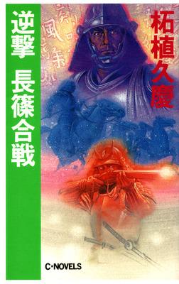 逆撃 長篠合戦-電子書籍