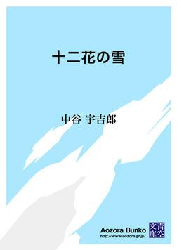 十二花の雪-電子書籍