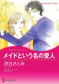 メイドという名の愛人-電子書籍