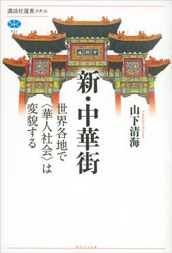 新・中華街 世界各地で〈華人社会〉は変貌する-電子書籍