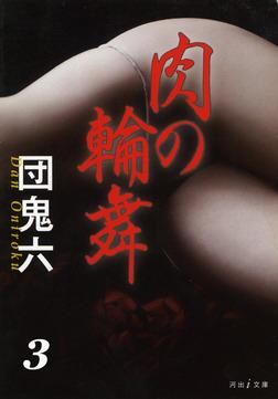 あの女優を犯せ 肉の輪舞3-電子書籍