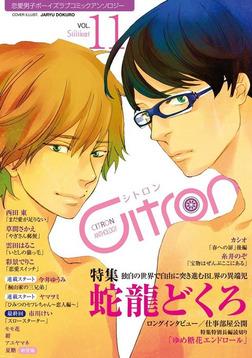 ~恋愛男子ボーイズラブコミックアンソロジー~Citron VOL.11-電子書籍