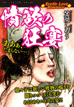 Erotic Love Romance 情欲の狂宴-電子書籍