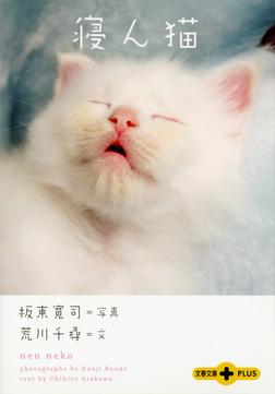 寝ん猫-電子書籍