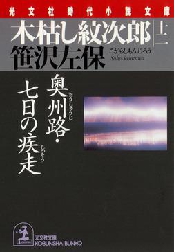 木枯し紋次郎(十二)~奥州路・七日の疾走~-電子書籍