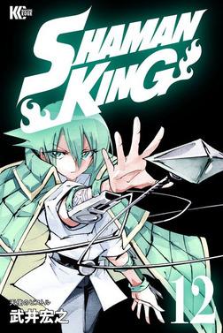 SHAMAN KING ~シャーマンキング~ KC完結版(12)-電子書籍