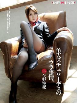 美人スチュワーデスのウラ事情。 矢野沙紀-電子書籍
