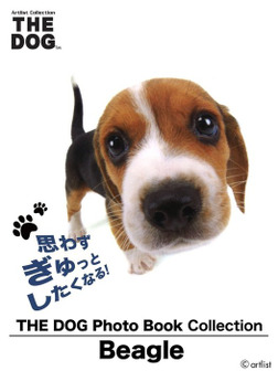 THE DOG Photo Book Collection Beagle-電子書籍