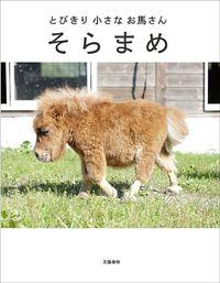 とびきり小さなお馬さん そらまめ(文春e-book)
