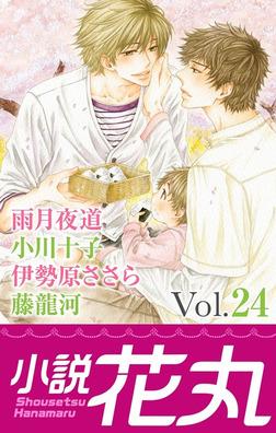 小説花丸 Vol.24-電子書籍