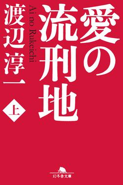 愛の流刑地(上)-電子書籍