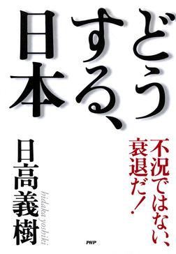 不況ではない、衰退だ! どうする、日本-電子書籍