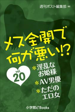 メス全開で何が悪い!? vol.20~淫乱なお姫様、AV男優、ただのエロ女~-電子書籍