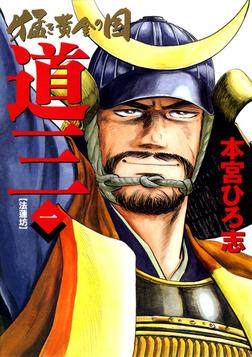 猛き黄金の国 道三 一-電子書籍