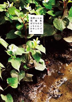 浅野いにお短編集 ばけものれっちゃん/きのこたけのこ-電子書籍